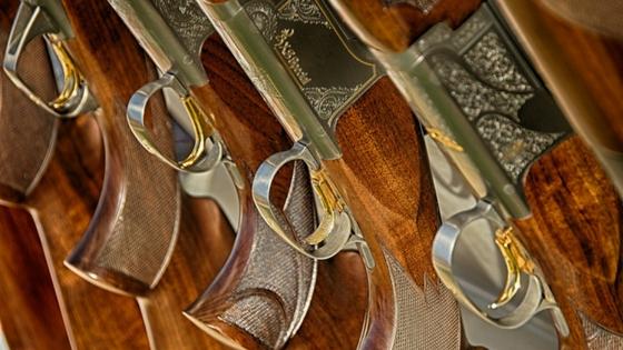 Guns lined up for a gun range